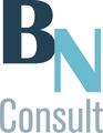 BN Consult