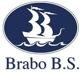 Brabo Business Services